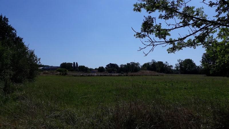 Vue du site des fouilles archéologiques de Jonzac