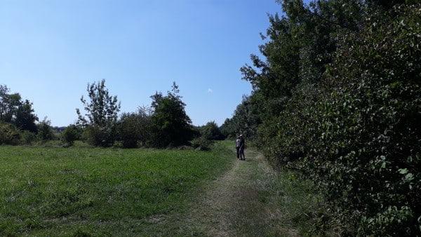 A travers champ sur le chemin des thermes de Jonzac