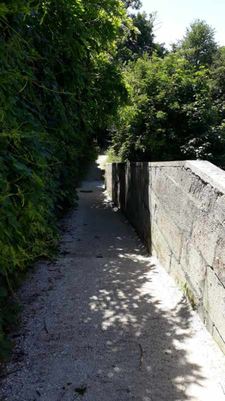 Départ de la promenade nature à Jonzac depuis le Pont de Pierre