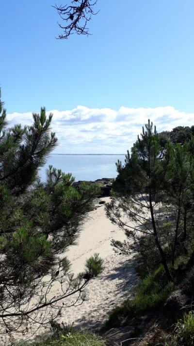 Plage des Sables jaunes sur l'île Aix